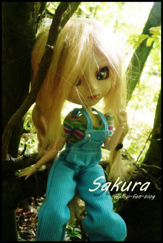 Sakura dans la forêt :)