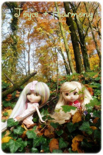 C'est beau l'automne ♥