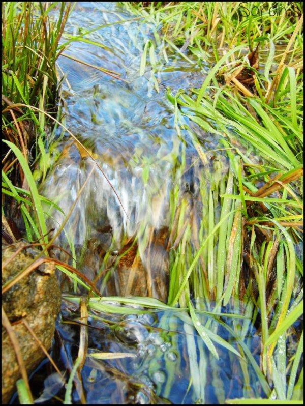 Histoire d'eau ..