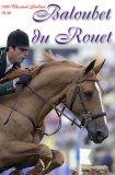 Photo de equitation-utina