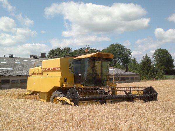 New holland TX 36 en action.