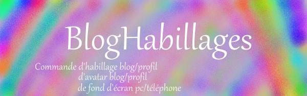 habillage de blog conseillé
