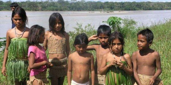 refuser des Indiens d'Amazonie en ami ces du racisme