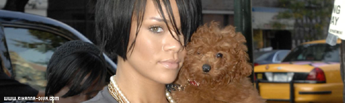 » News | Rihanna n'oublie pas son chien
