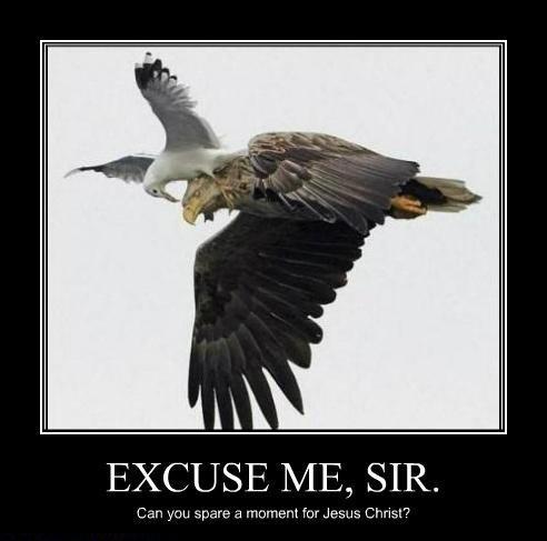 Excuse me sir....1