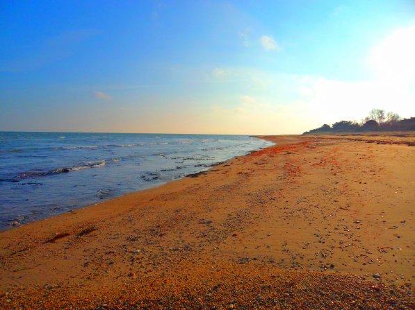 1er Février 2012 , il fait 1 degré sur la plage !!!! mais je suis toujours face à la mer ! je résiste !!!