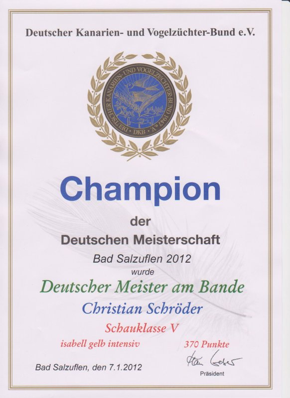 Championstamm Isabellvögel