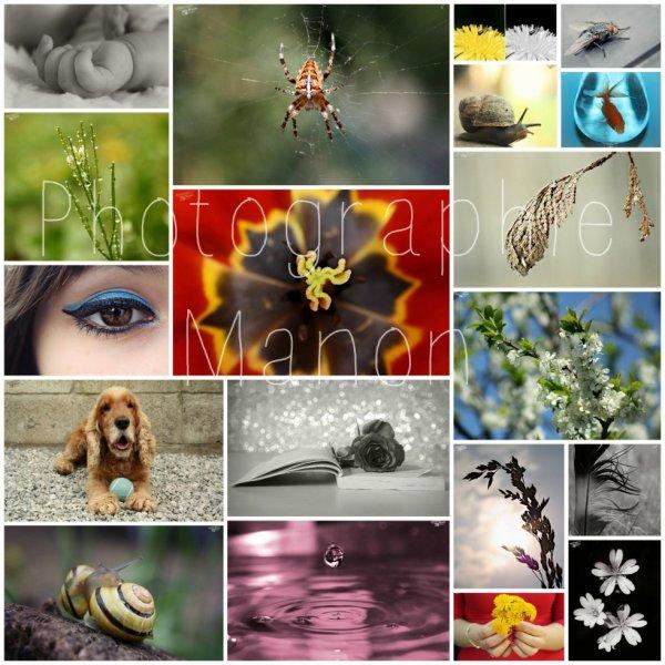 La photographie? Une énorme passion! ♥
