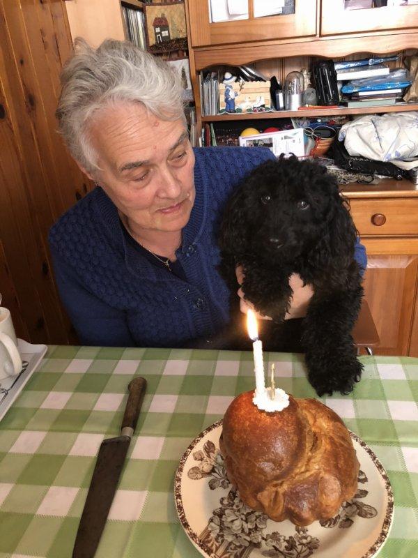 Bonne anniversaire Nicky pour ta  première année
