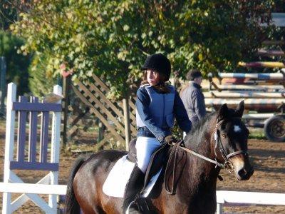 Tu as été le meilleure poney en concours. Tu m'as donné envie de continuer et tout ca grace a toi