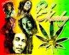 ghetto-77-illicite