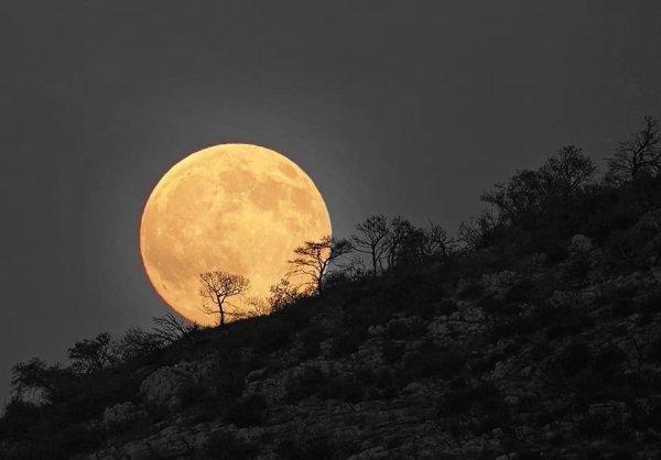 Que votre nuit soit douce et que vos rêves soient tendres.....