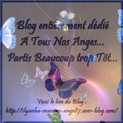 *** Blog entièrement dédié à Tous Nos Anges Partis Beaucoup trop Tôt... ***
