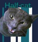 Photo de half-cat