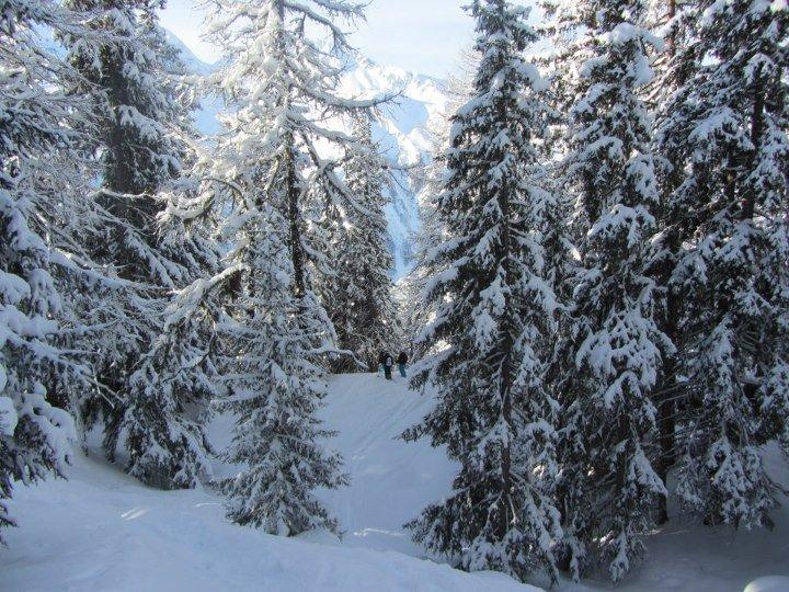 Au ski :)