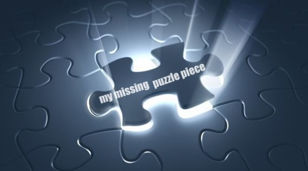 my missing puzzle piece