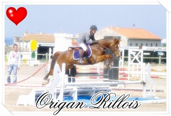 Origan Rillois ♥