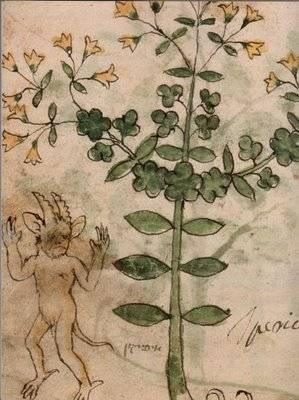La charge des plantes