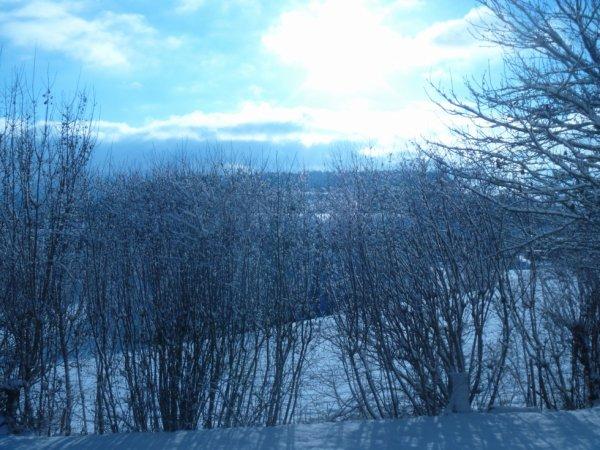Bientôt l'hiver =)