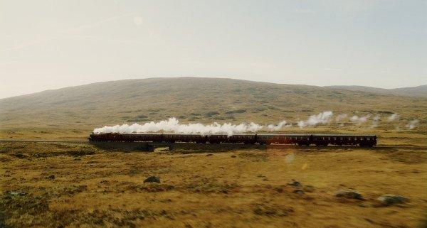 -Chapitre IV : En route vers Poudlard -
