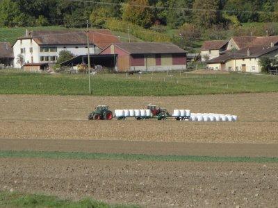 Transport de balles rondes de maïs 2010.