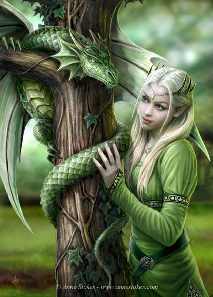 Joli Petit Elfe et Dragon*