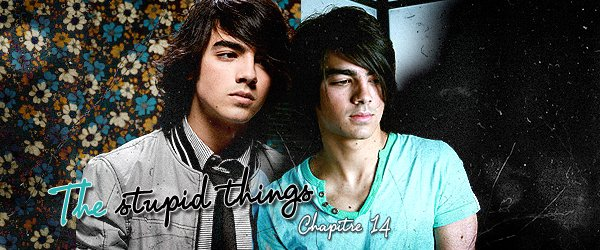 Chapitre 14 - The Stupid Things