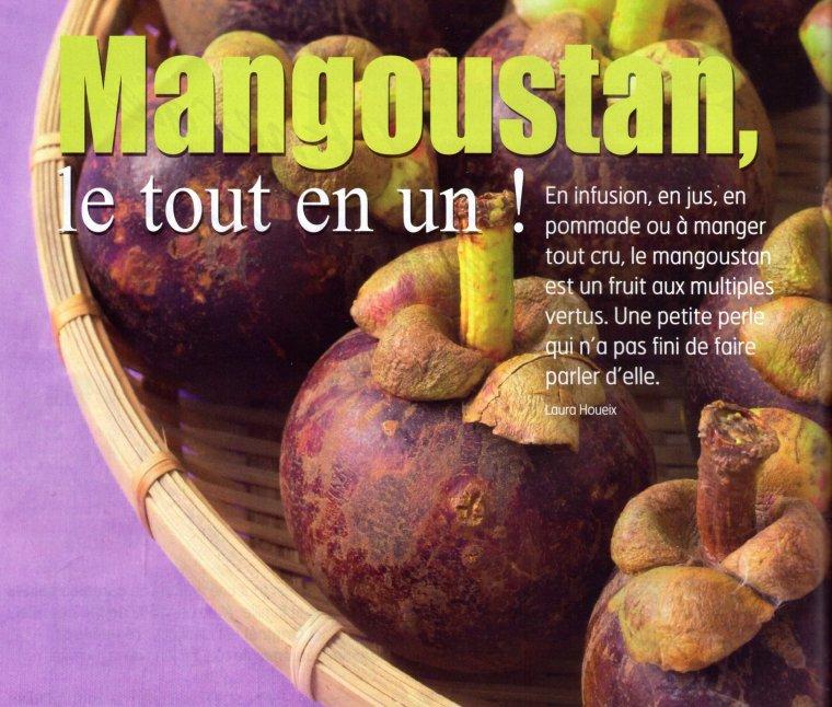 le mangoustan fruit exotique blog de biquette 72. Black Bedroom Furniture Sets. Home Design Ideas