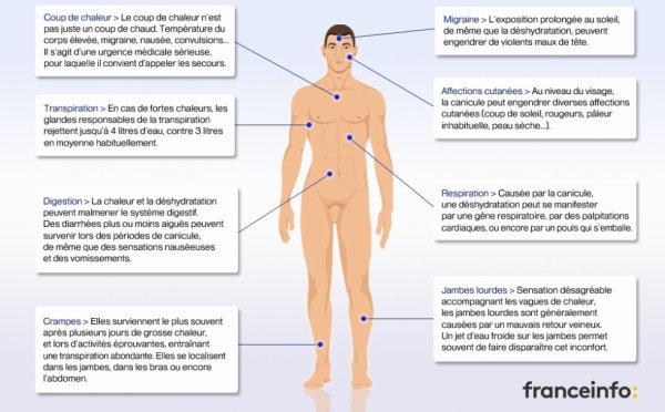 LES EFFETS DE LA CANICULE SUR VOTRE CORPS!!
