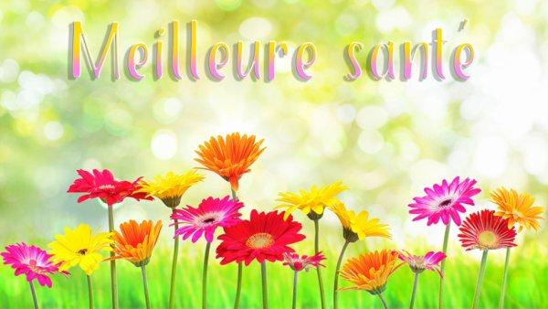UNE MEILLEURE SANTE A TON MARI COPINETTE JOSY! - Blog de biquette-72