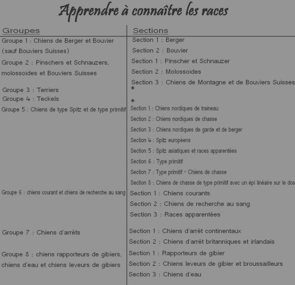 Groupes et Sections