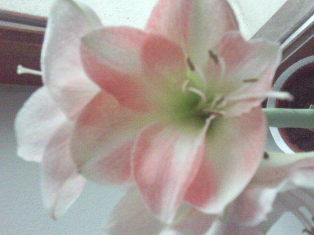 Blog de poeme69360