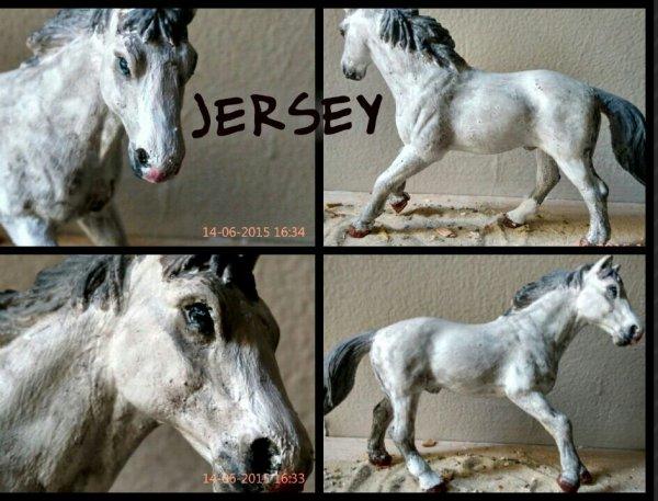 Nouveau custom : Jersey