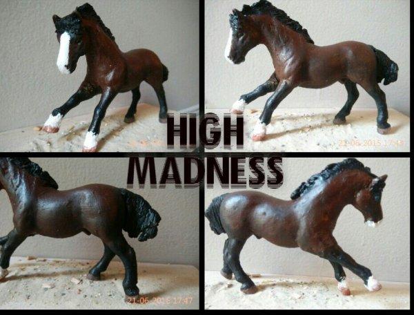 Nouveau  custom High madness