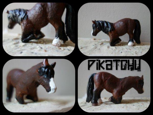 nouveau custom Pikatchu