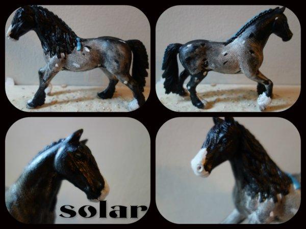 nouveau custom:Solar des Aberts