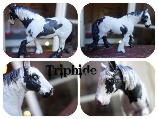 nouveau custom : Triphide