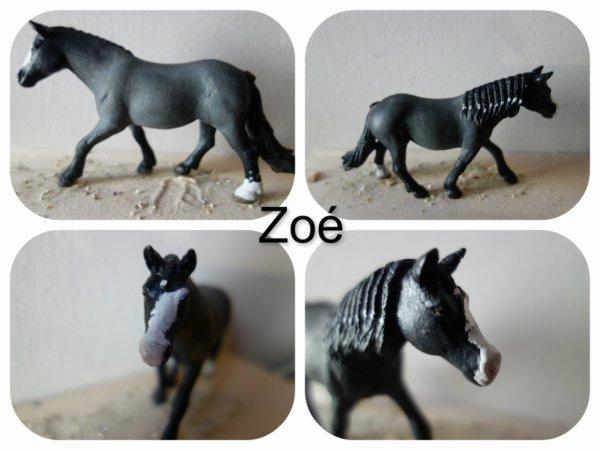nouveau custom: Zoé