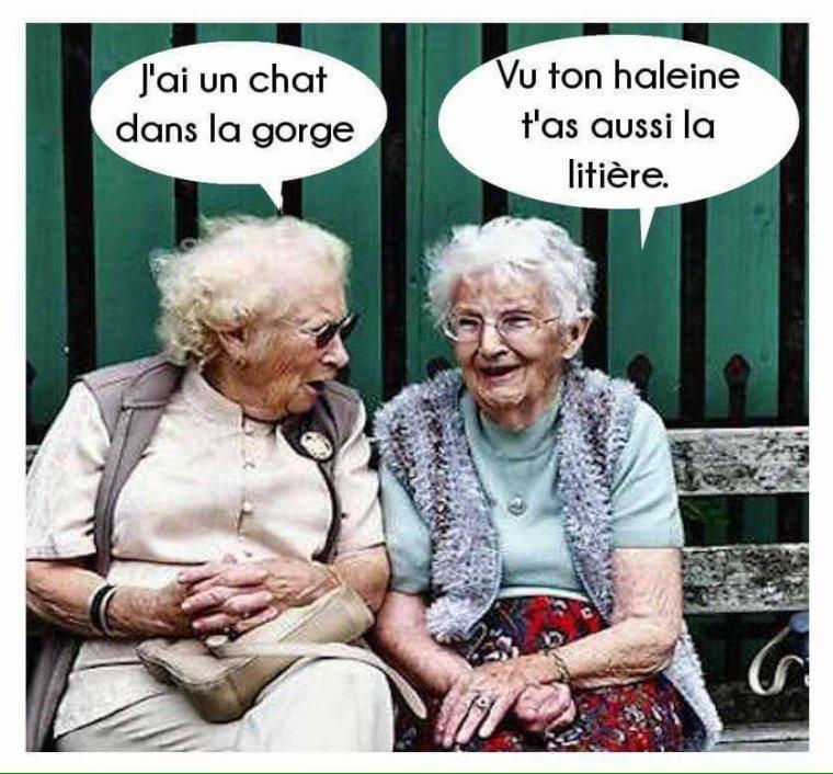Mon humour de ce jour ...  lol  ;-)