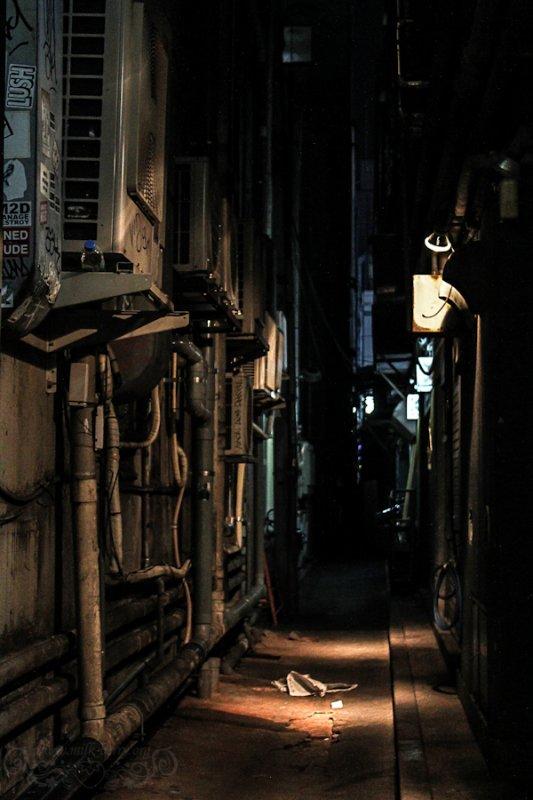 Chapitre 2: Rencontre au détour d'une ruelle
