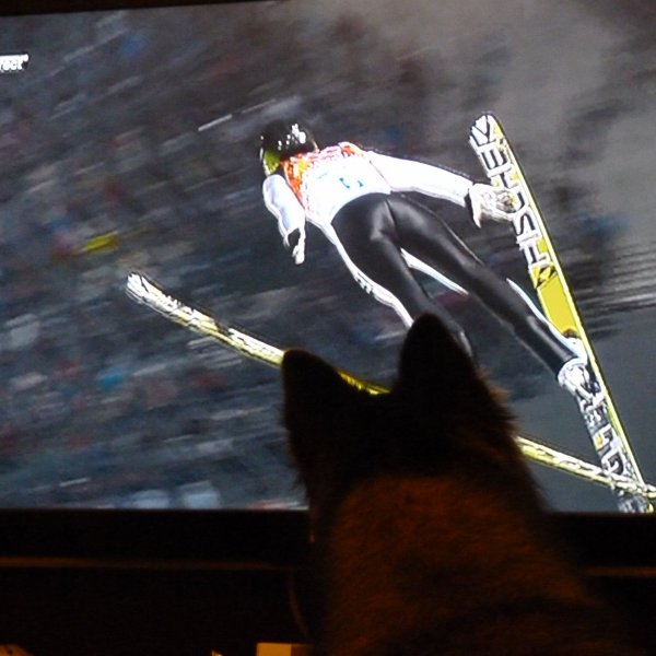 tao va beaucoup mieux même si j'aime pas les jeux olympiques !