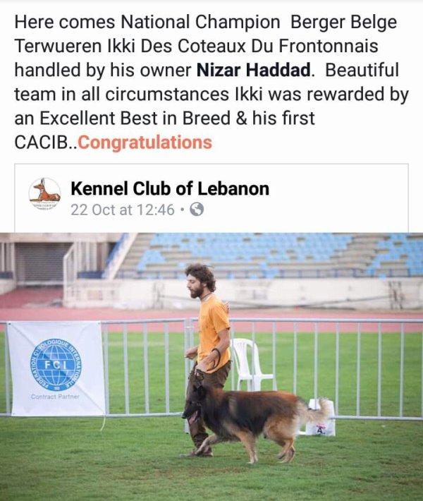 fiere d'être belge et fière que tu sois au liban