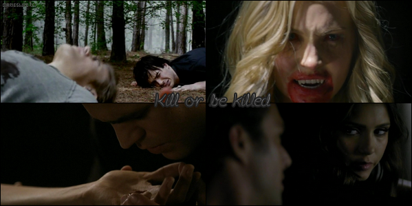 The Vampire Diaries / Kill or be killed.