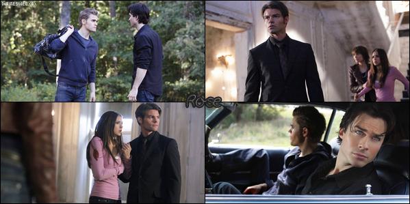The Vampire Diaries / Rose.