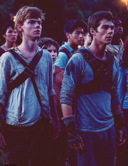 #1 Top5 Films 2014