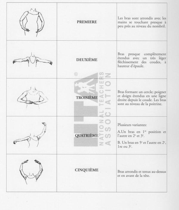 Position des bras et des pieds