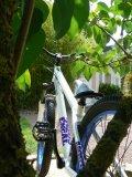 Photo de Ride4life49
