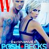BeckhamWEB