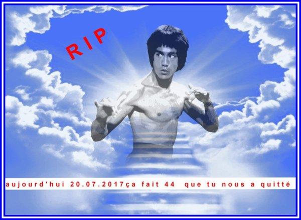 Rip :  tu nous manque  Bruce