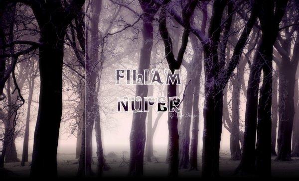 Commande effectuée par Filiam Nuper.